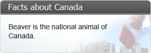 Beaver is the national animal of Canada.