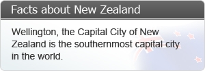 Wellington, the Capital City of New Zealand is the southermost capital city in the world.